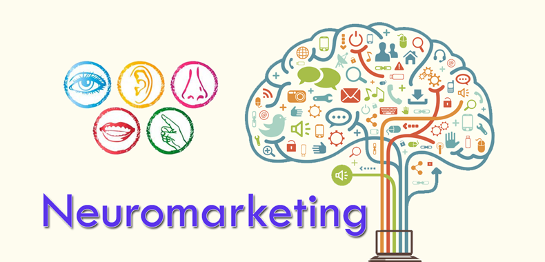 Amplie suas vendas com o Neuromarketing