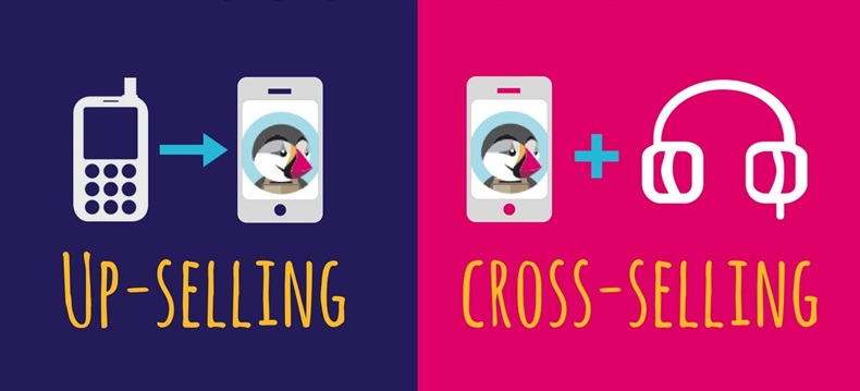 Qual o significado de cross-selling e do up-selling?